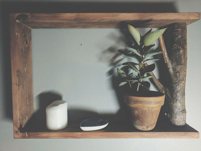 Photo of a shelf I made Indoors  Close-up Plant Candle Soap Dish No People Day Freshness