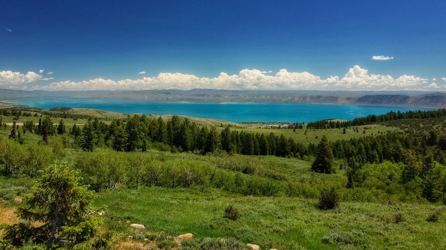 Bear Lake Blue