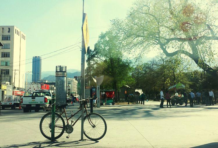 Celebrate Your Ride Parking Twowheelsmovethesoul Sunnyday☀️