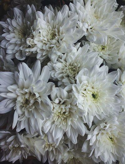 Вчера был замечательный день, день рождения моей мамы❤️ Flower Happy Birthday! Love Mother Son