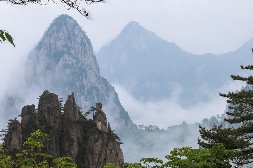 Beauty In Nature Fog Forest Huangshan Landscape Mountain Mountain Range Nature Outdoors Peak Physical Geography Range Rock - Object Seas Of Clouds Sky Tranquil Scene Tranquility Tree