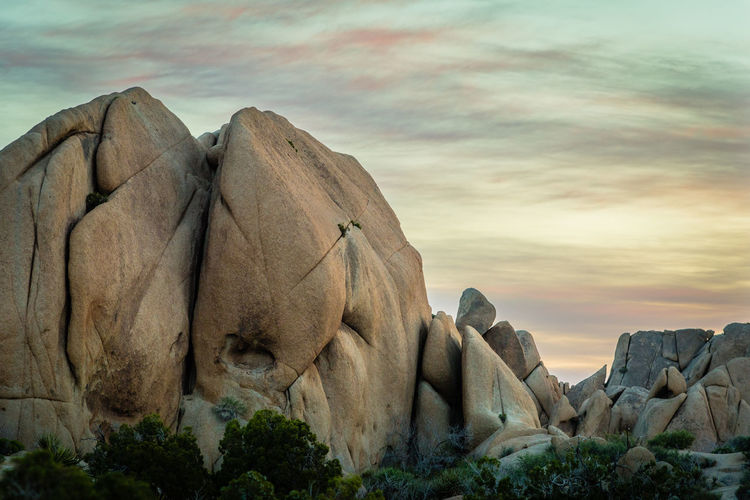 Morning at Joshua Tree National Park California Dreamin Desert Joshua Tree National Park Jumbo Rock Tranquility Arid Landscape Beauty In Nature Desert Beauty Landscape Mojave No People Pastel Colors Southwest  Sunrise Tranquil Scene Travel Destinations