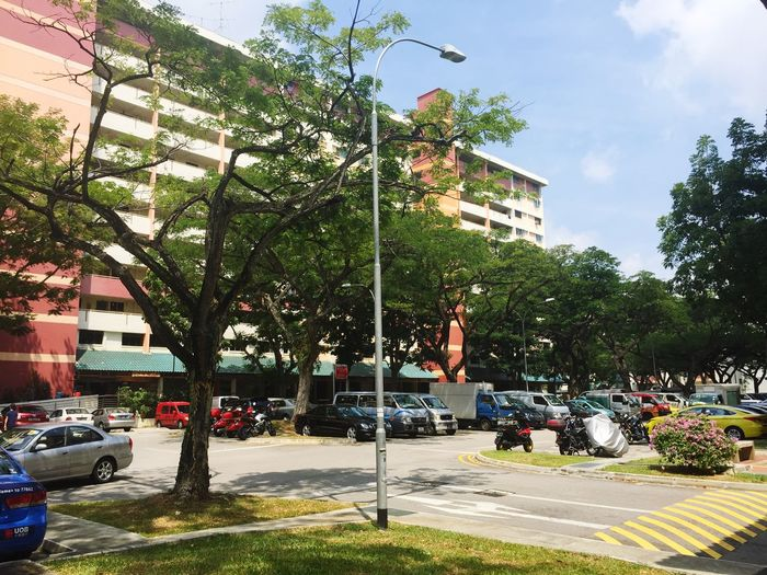 Public housing in Singapore must be one of the world's safest, most organised and greenest. Do you agree?
