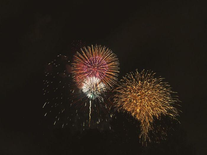 板橋区荒川の花火大会 素晴らしい First Eyeem Photo