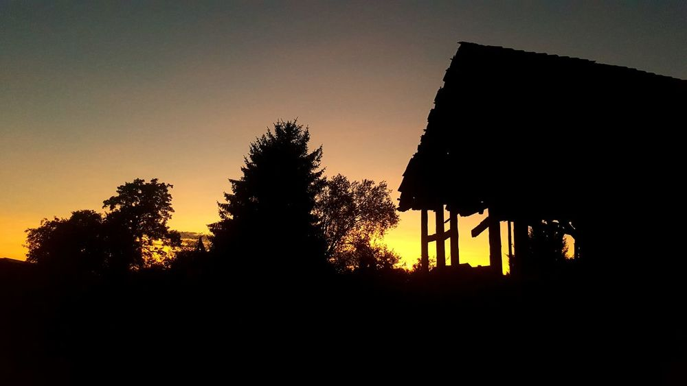 Silhouette Sunset Tree No People Sky Outdoors Nature Low Angle View NightLostintravel Lostplacephotography Lostinplace Lostplacesgermany Lostplaces Lost In The Landscape Eastgermany Lostintime Katerbow