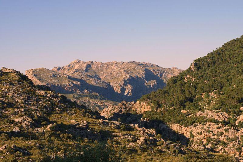 Balearic Islands Mallorca EyeEm Selects Mountain Scenics - Nature Sky Beauty In Nature Tranquil Scene Tranquility Clear Sky Tree Nature Mountain Range No People Non-urban Scene Landscape Sunlight Environment Land Idyllic