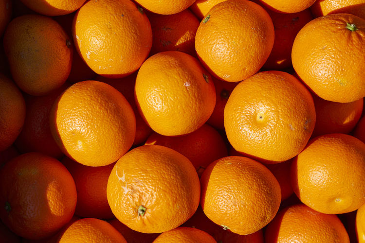 Abundance Backgrounds Blood Orange Citrus Fruit Close-up Day Farmer Market Food Food And Drink Freshness Fruit Full Frame Healthy Eating Healthy Lifestyle Large Group Of Objects No People Orange - Fruit Orange Color Oranges Organic Outdoors