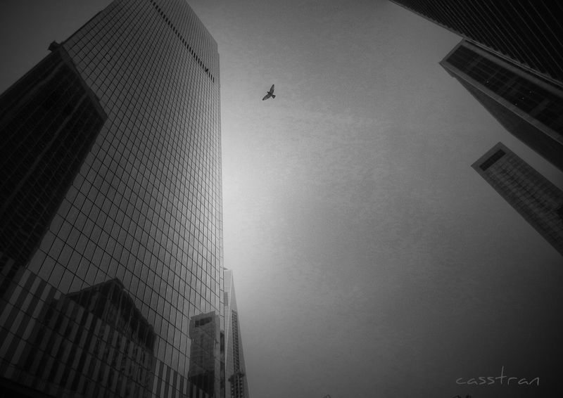 A sliver of WTC WorldTradeCenter New York City Cityscapes Taking Photos