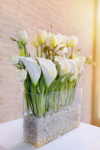 White lilies Calla in vase. Calla Lily Lily Vase Backgrounds Beauty In Nature Bouquet Bunch Of Flowers Container Flower Flower Arrangement Flower Head Flowering Plant Fragility Freshness Green Color Indoors  Inflorescence Lilies Nature Plant Vase Vulnerability  White White Color White Lily Flower