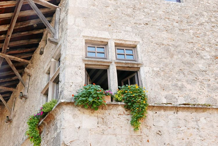 Window Architecture Building Exterior Built Structure Day Outdoors House No People Plant Flower Low Angle View Residential Building Window Box Whitewashed Nature Perouges France MedievalTown Love Yourself