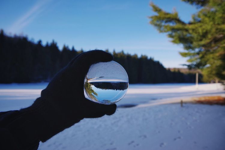 Close-up of hand holding crystal ball against trees