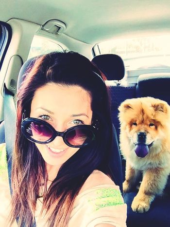 ChowChow On The Road Roadtrip That's Me Hello World Cheese! Taking Photos Enjoying Life Having Fun Hanging Out