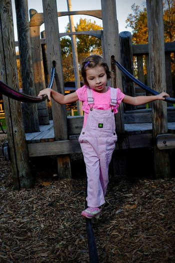 Little Girl Playing On Wooden Jungle Gym At Park