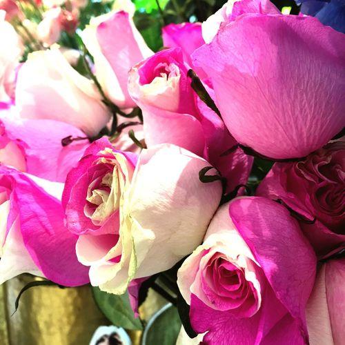 Flowers Flowerporn