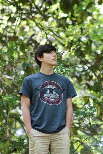 Teen Tree
