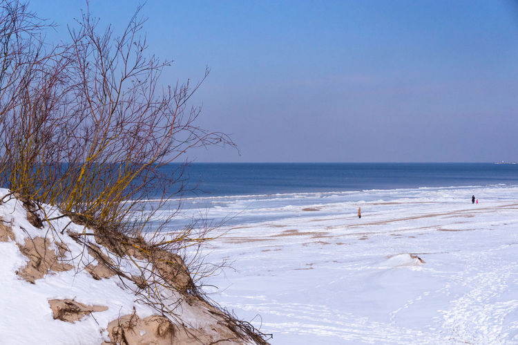 Snowy dunes and seaside in March Beach Photography Coastline Landscape Walking Around Taking Pictures Winter, Snow, Ice, Froze,frozen, Water, White, Shore, Shoreline,ship,ships, Dock, Docks, Marina,transport, Boat, Boats,large,transportation,town,lake,Lake Michigan ,colors, Color, Bird, Birds,structure,structures, Building, Buildings, Architecture, Archit Wintertime Wood Dunescape March, Reed, Grass, Dunes, Seaside, Coastline, Snowy, Frost, Sand, Beach, Weatherearly, Awakening, Detail, Wooden, Winter Reeds Seaside Snowy