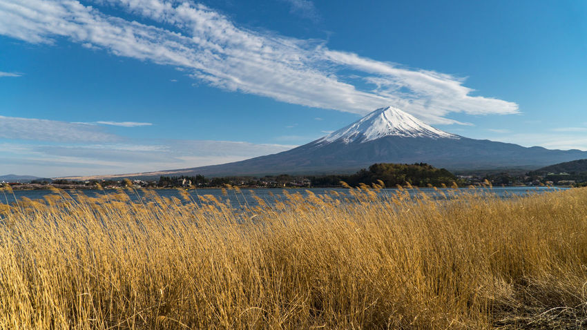 Mount Fuji at Kawaguchiko lake. Beauty In Nature Cloud - Sky Cold Temperature Environment Fuji Grass Land Landscape Mountain Mountain Peak Nature No People Outdoors Plant Scenics - Nature Sky Snow Snowcapped Mountain Tranquil Scene Tranquility Volcano Winter