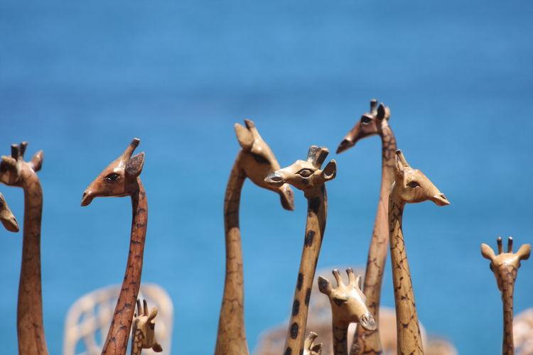 Close-up Day Giraffes No People Outdoors Sculptures Sky Wooden Giraffes