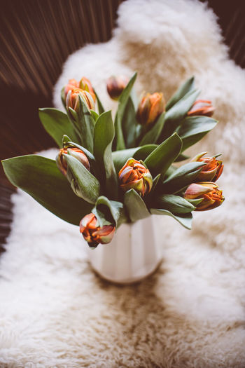 fresh orange tulips bouquet Tulips Vase Acapulco Chair Black Acapulco Chair Condesa Chair Decoration Flower Flower Bouquet  Flowers Hygge Hyggelig Indoors  Interior Design Lamb Wool Orange Color Orange Tulip Spring Spring Decoration Spring Design Tulip Tulips Flowers Tulips In The Springtime Vase Of Flowers Vases White