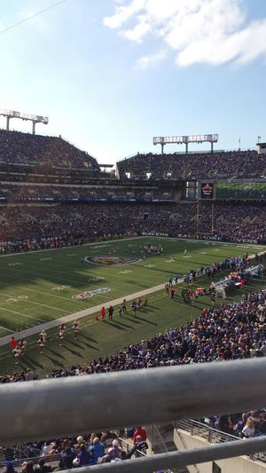 My view Ravens Nation Baltimore Ravens Hanging Out