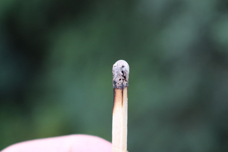 Close-up of burnt matchstick outdoors