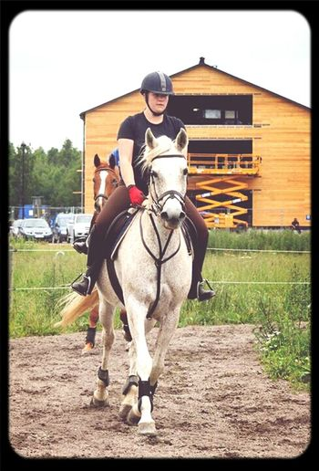 This summer with Tiara! :) Horse Riding Horses Riding Horse