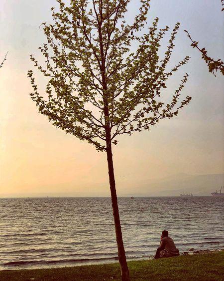 Bir şey kaldı, bir denizin kıyısında senden, Bakışlarla yüklü, söylemelerle sessiz.. Seninle dolu, seninle sensiz bir şey.. Myseadenizim Sky Water Sea Tranquility Beauty In Nature Nature Plant Tranquil Scene