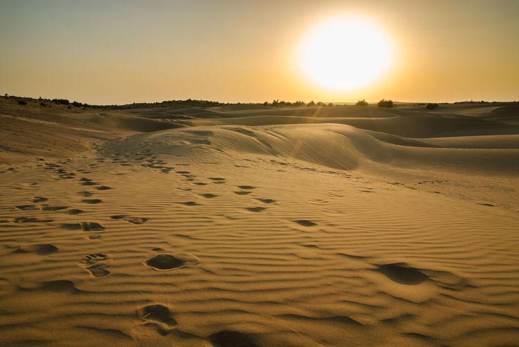 Sunset on desert India Arid Climate Desert Jaisalmer Landscape Nature No People Outdoors Rajasthan Sand Sand Dune Scenics Sun Sunlight Sunset Thar Desert Tranquil Scene