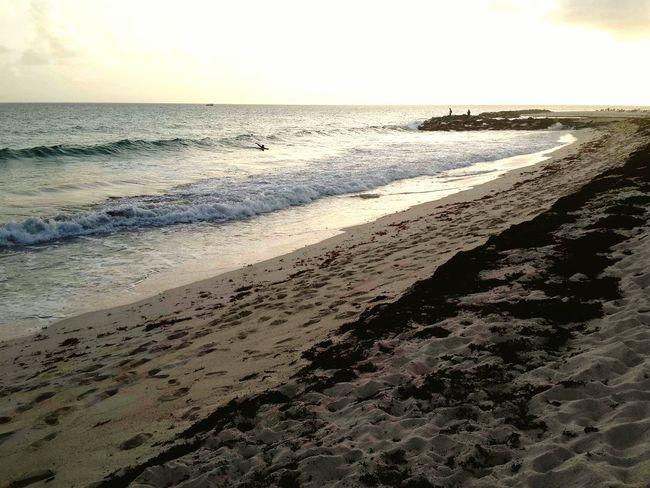 Beach Life Islandlife Relaxing Fresh Air