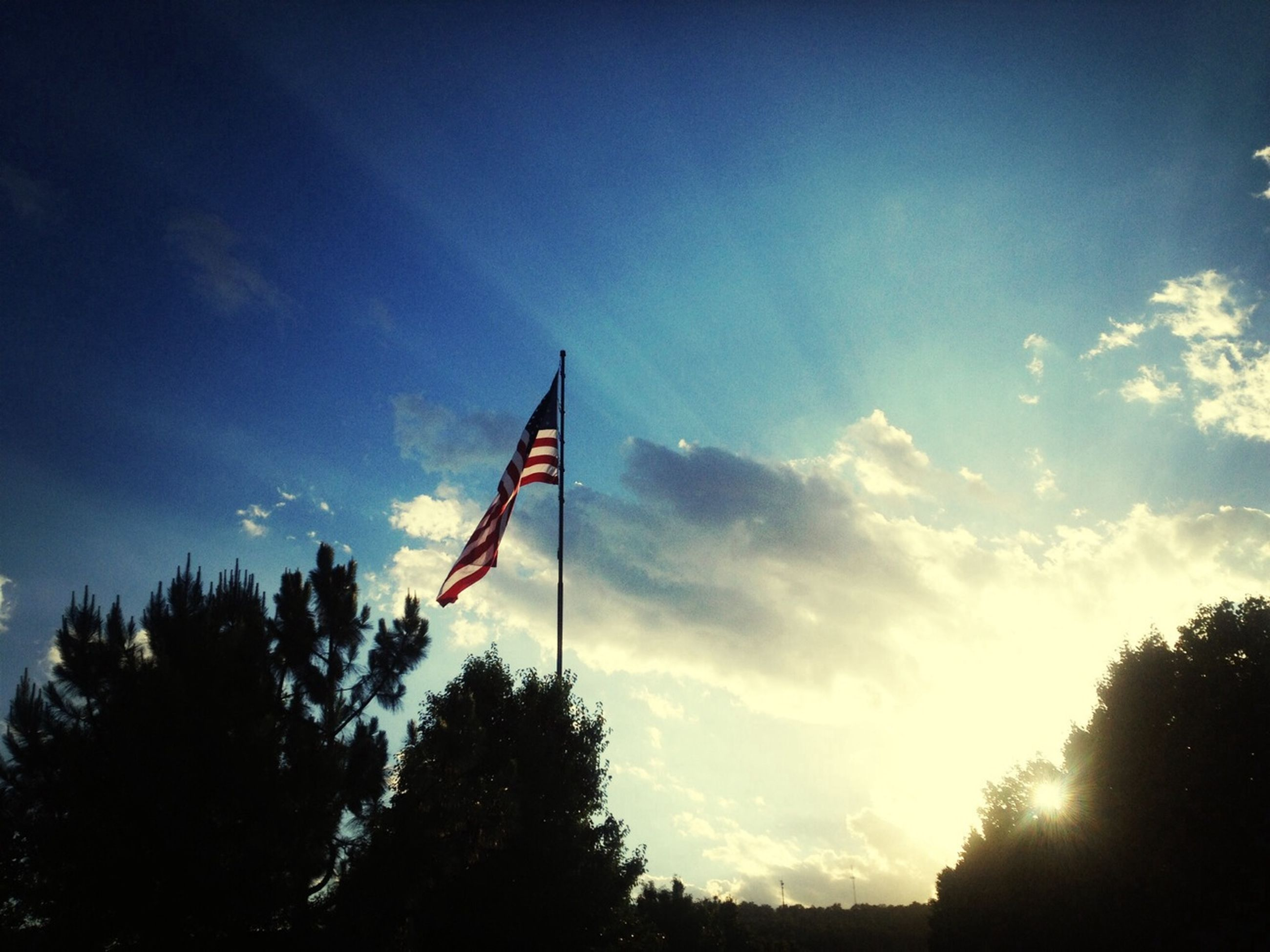 low angle view, tree, sky, flag, patriotism, cloud - sky, identity, blue, cloud, national flag, silhouette, nature, american flag, growth, day, outdoors, no people, wind, red, beauty in nature