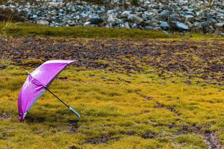 Umbrella on field during rainy season