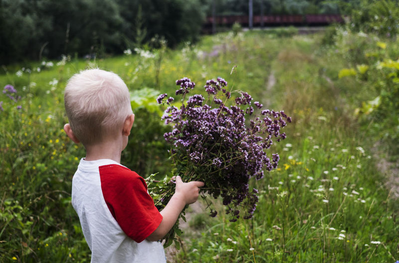 Boy in with flowers in his hands watching a passing train Beauty In Nature Blond Hair Boy Boys Caucasian Child Childhood Children Only Day Flower Freshness Grass Growth Hands Nature One Person Outdoors Passing People Purple Real People Train Travel Traveling Watching Sommergefühle