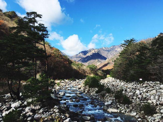 설악산 대한민국 풍경 Mountain Southkorea Landscape First Eyeem Photo