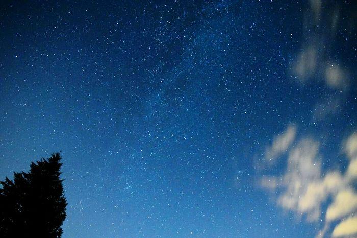 Starry Starry Night Stars Nightphotography Rainier Oregon Night Lights Space Daring DeOil Darryn Doyle Astrophotography Pacific Northwest