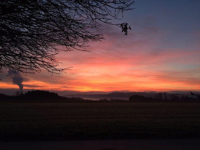Sonnenaufgang im Dezember. Guten Morgen liebe Follower. 💕💗 Monique52 Himmel Hochrhein The Purist (no Edit, No Filter) Sonnenaufgang