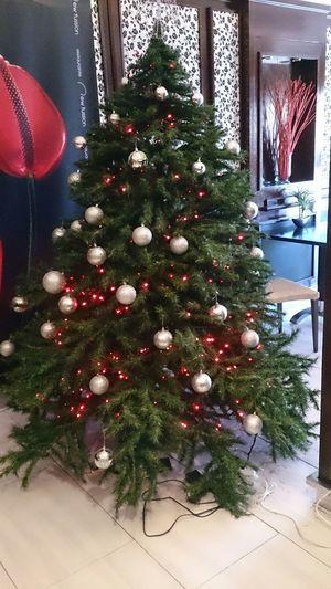 Otra clase de Arbol De Navidad