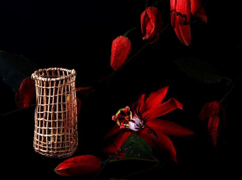 Traditional Aboriginal Culture Hand Woven Basket North Queensland, Australia Passion Flower And Black Background Studio Lighting Traditional Aboriginal Culture
