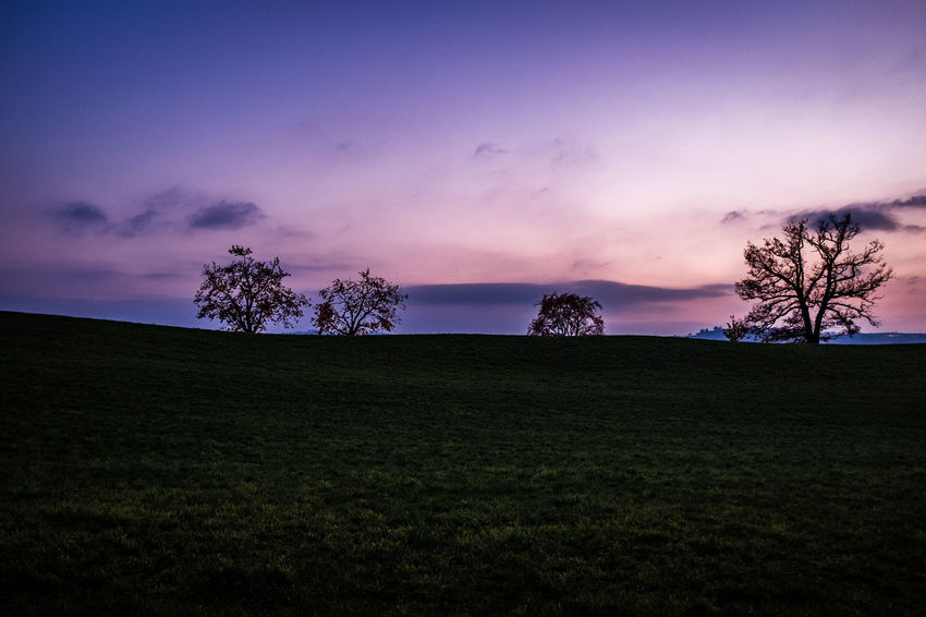Sky Plant Scenics - Nature Tree Environment Grass Beauty In Nature Tranquility Cloud - Sky Landscape Land Sunset Tranquil Scene Field Nature Non-urban Scene Silhouette No People Dusk Idyllic Outdoors Purple