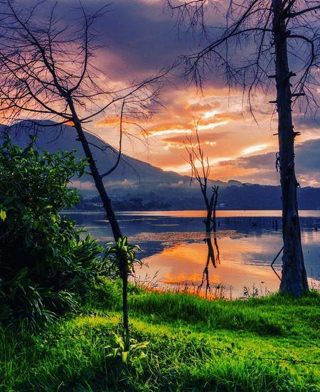 Solar Farewell Tree Water Mountain Lake Sunset Tree Trunk Sky Grass Landscape Cloud - Sky