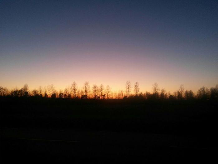 Showcase March Evening Sky Evening View Sunset Walking Alone... Walking Blue Sky Tree And Sky In Växjö Sweden Urban Nature No People Sweden Popular Photos Silouette Nature_perfection EyeEm Best Shots Inväxjö Sweden