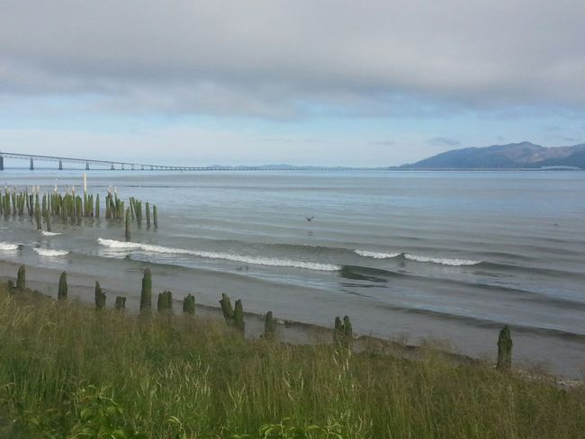 Beach Sea Sand Water Landscape Nature Travel Destinations Tranquility Tranquil Scene Dramatic Sky Scenics Majestic Beauty In Nature Tourism Grass Awe Outdoors Tide Northcoastrecovery Loneliness Columbia River Astoria, Oregon Astoria, OR Cloud - Sky Weather