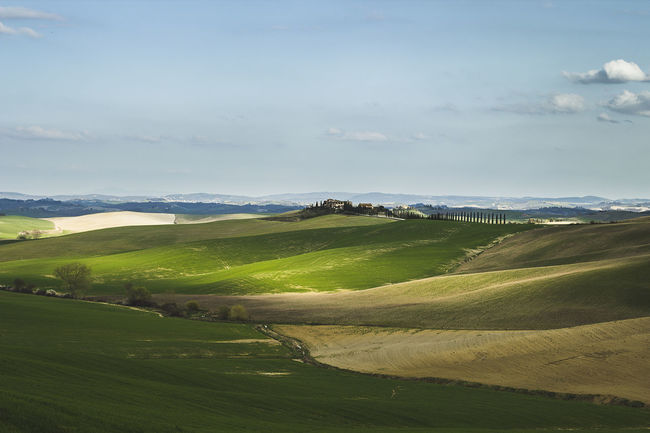 Beauty In Nature Countryside Day Field Firenze Grass Green Color Green Hills Hills Landscape Nature No People Outdoors Rural Scene Scenics Siena Sky Sky And Clouds Toscana Tranquil Scene Tranquility Tuscany Tuscany Countryside Vino Wine