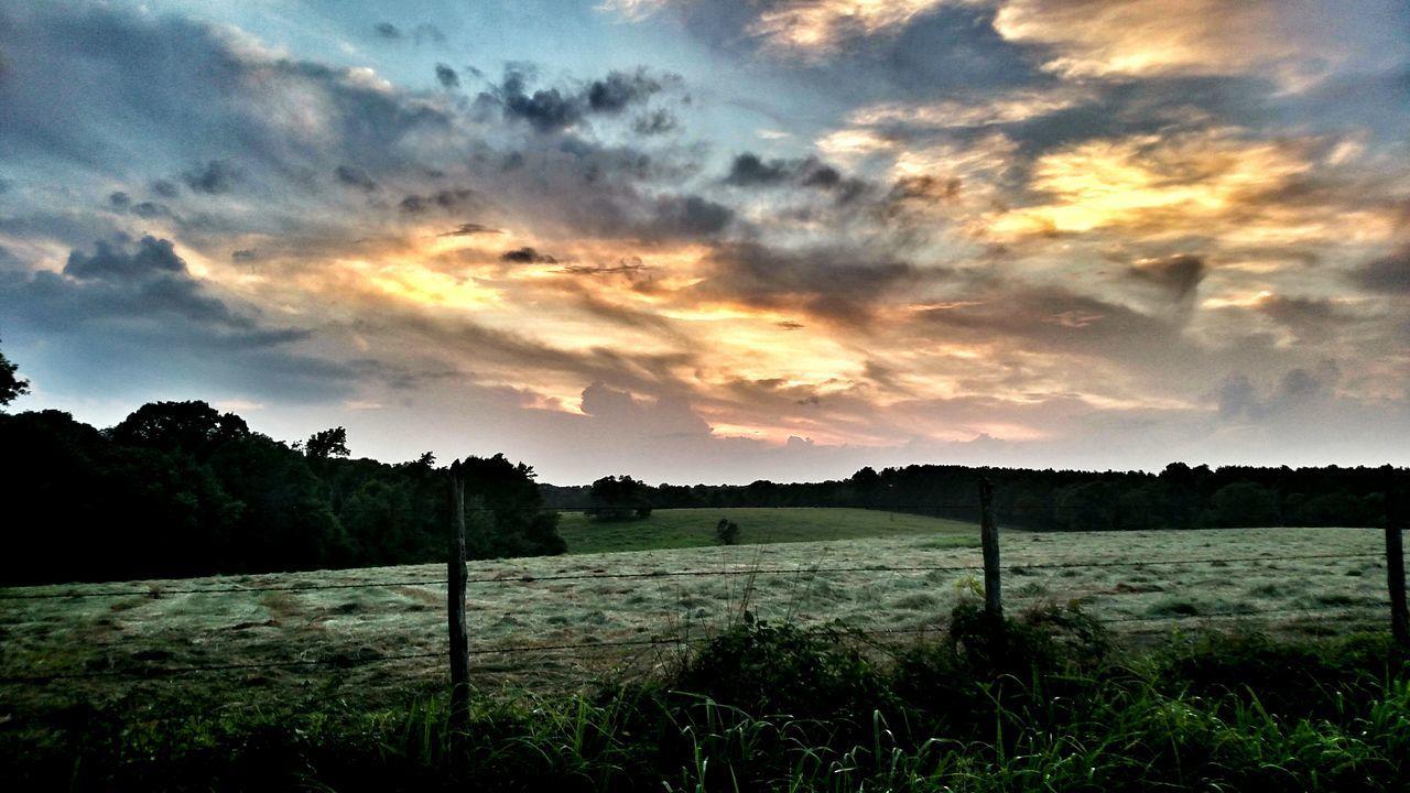 Empty Pasture At Sunset