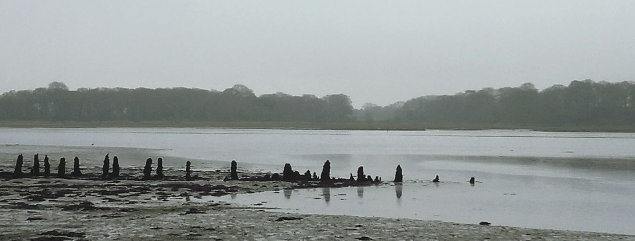 Beauty in a winter's walk on a grey day. Water Chichester Harbour Landscape Waterscape Reflections Nature Winter Grey Grey Sky Beauty In Nature Calm Outdoors