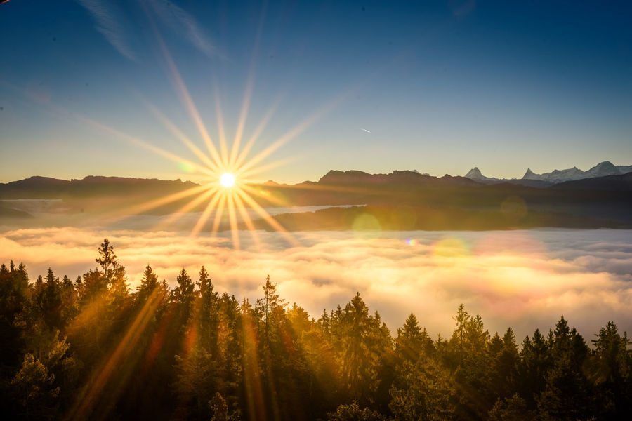 Beauty Beauty In Nature Blue Cloud - Sky Cultures Forest Galaxy Igniting Landscape Morning Mountain Mountain Range Natural Parkland Nature No People Outdoors Sky Sun Sunbeam Sunlight Sunset Tranquility Travel Tree Vacations