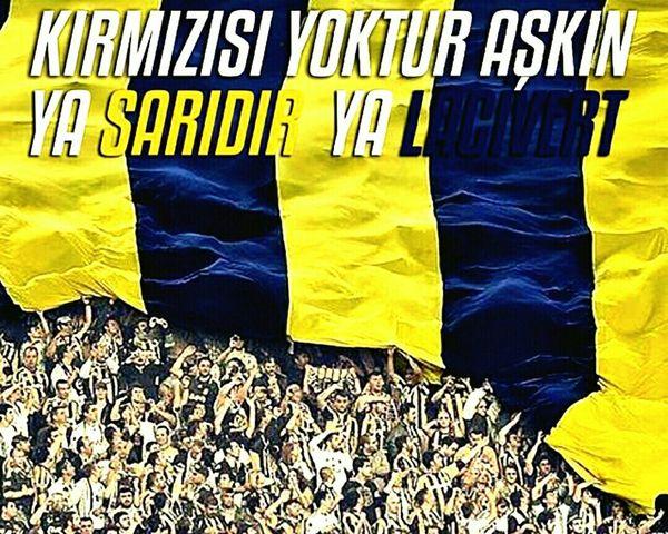 Love Fenerbahce  Aşk Sarı Lacivert Türkiye LaLiga Realmadrid Champions Germany