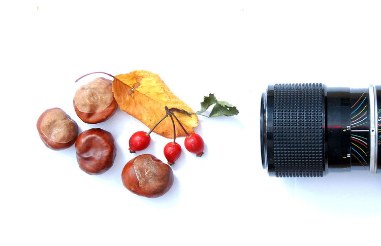 lens Camera Camera Lens Cashew Close-up Day Food Food And Drink Freshness Fruit Healthy Eating Indoors  Leaf Lens No People Rose Hips Studio Shot White Background Wild