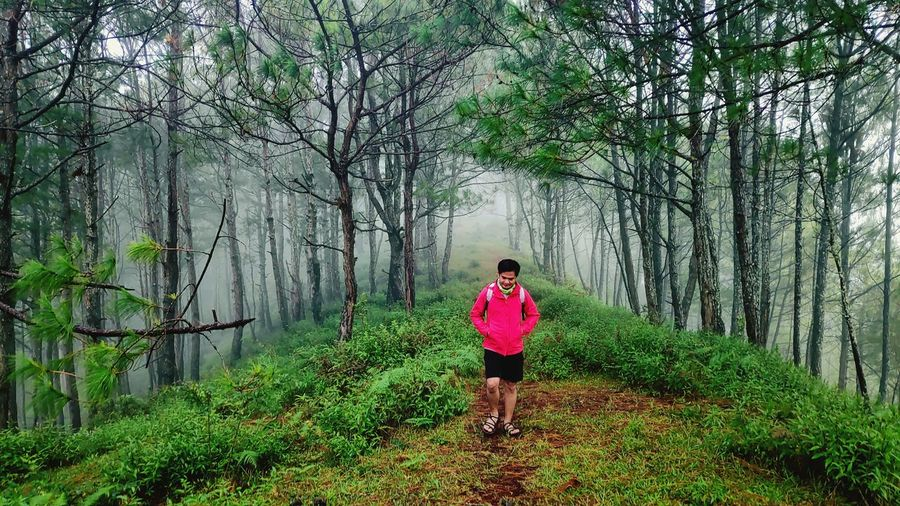 Tree Full Length Forest Photography Themes Women Rear View Standing Grass Sky Green Color Treelined Hiker Hiking Pole Hiking Trail Explorer Adventure Mountain Climbing Backpack
