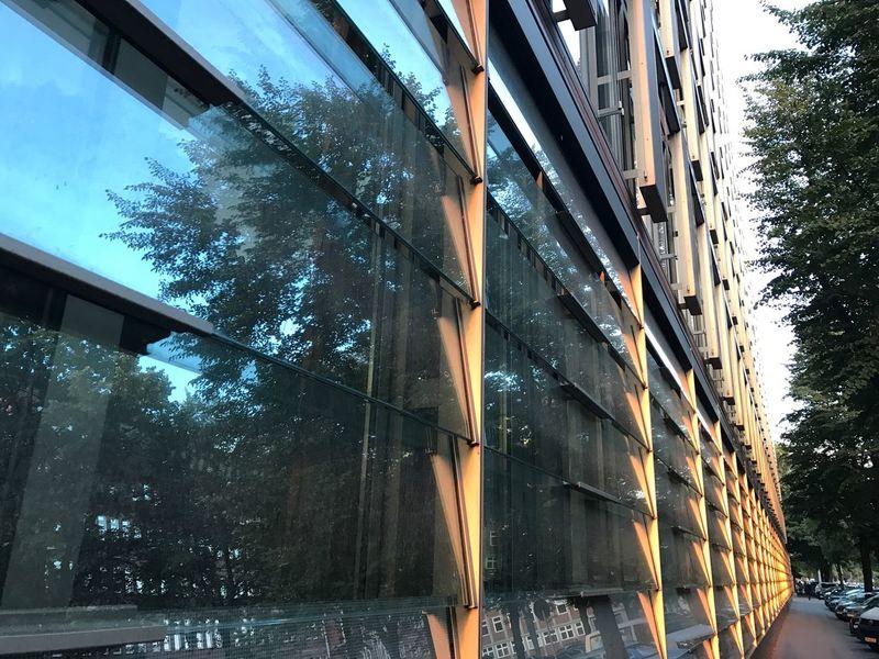 Hamburg Window Reflection Transparent Urban Horizons Glass Sunset Bernhard-Nocht-Straße