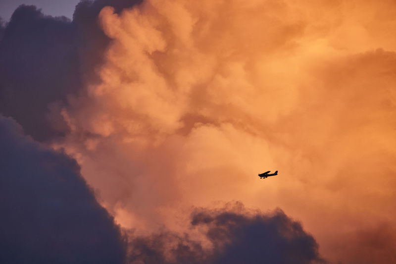 Flying at sunset... Flying Sky Cloud - Sky Air Vehicle Transportation Mode Of Transportation Airplane Sunset Nature Mid-air Silhouette No People Low Angle View Beauty In Nature Orange Color Travel Dramatic Sky Bird on the move Outdoors Aerospace Industry Scenics Aroundtheworld Tourism Landscape